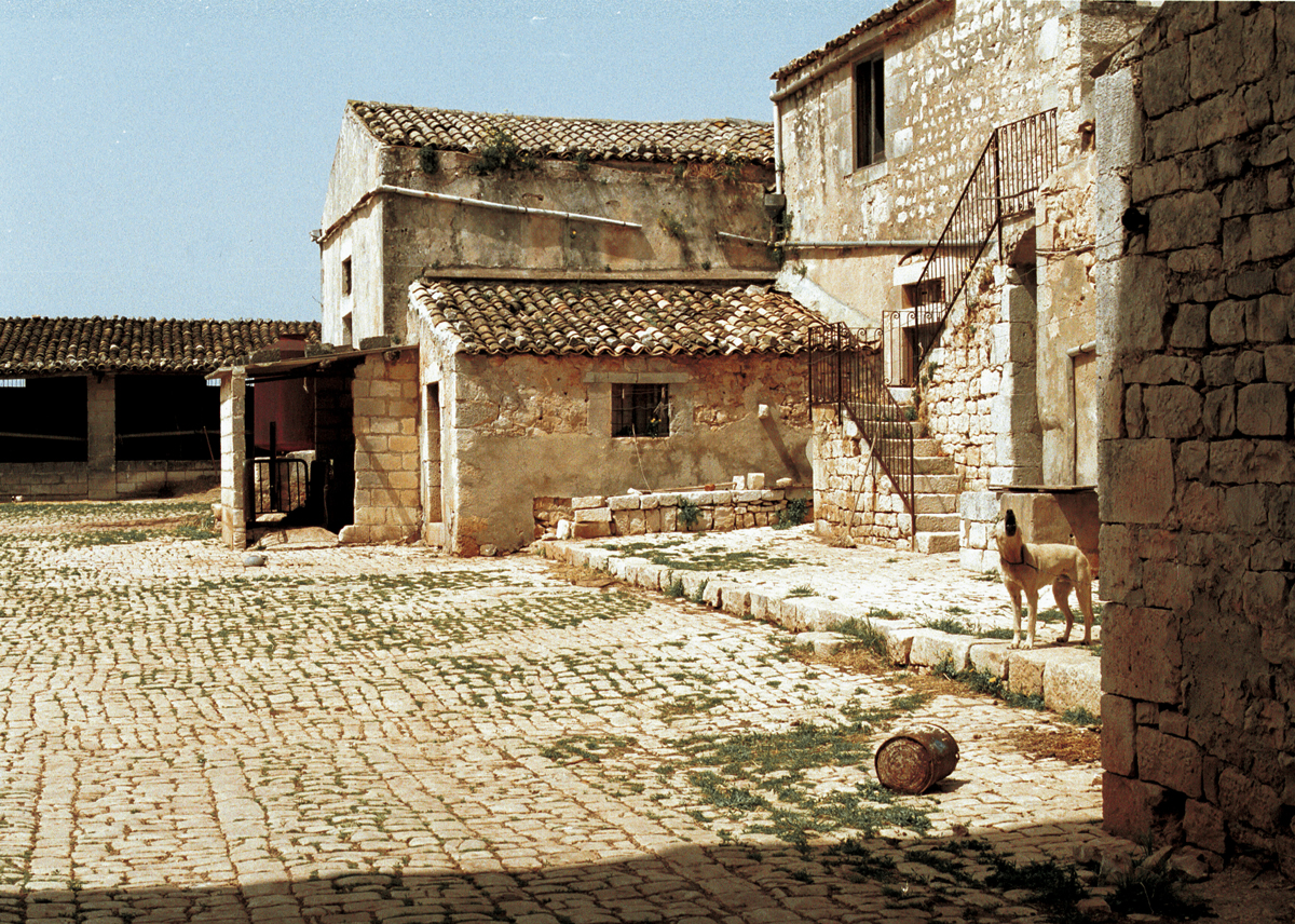 Sicilian Roots